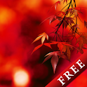 Autumn Colors Trial icon