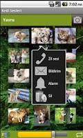 Screenshot of Cat Sounds