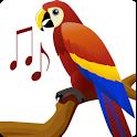 اصوات الطيور - Birds Sounds icon