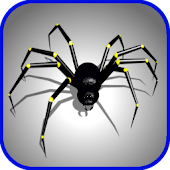 Spider Swarm