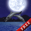 Dolphin★Night Trial icon