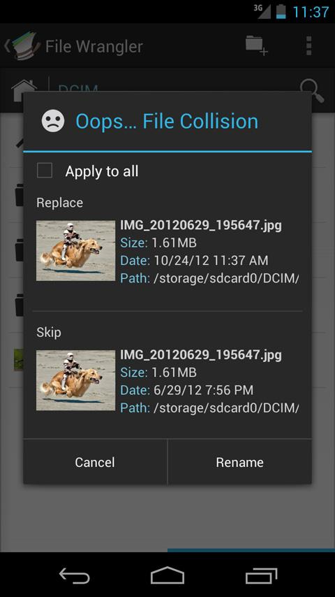 File Wrangler - screenshot