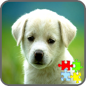Dog Puzzle Games