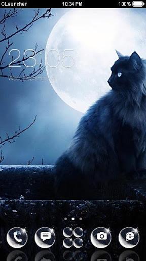Moonlight Cat Theme
