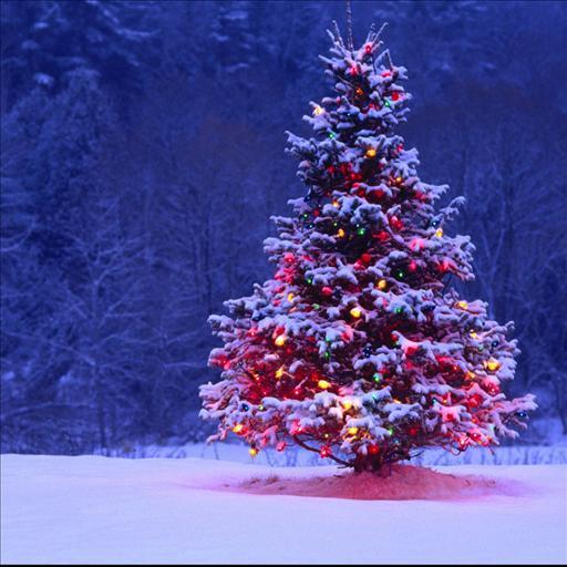Galaxy Christmas Tree LWP