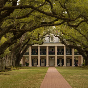 Oak Alley Plantation by Steve Hall - Buildings & Architecture Homes ( oak alley )