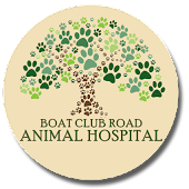 Boat Club Road Animal Hospital