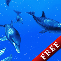 Shoal of Dolphin Trial icon