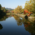 京都 嵯峨野小倉池の紅葉(JP049) icon