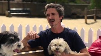 September 16, 2014 - Dog Trainer