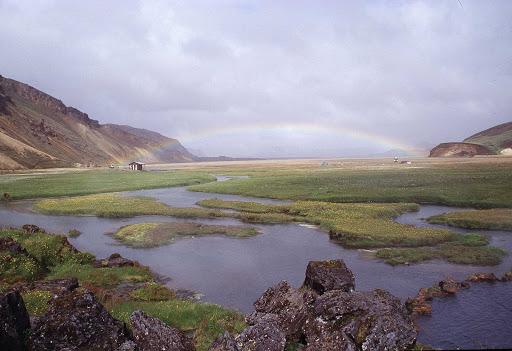 Iceland-saltmarsh1 - A saltmarsh in Iceland.