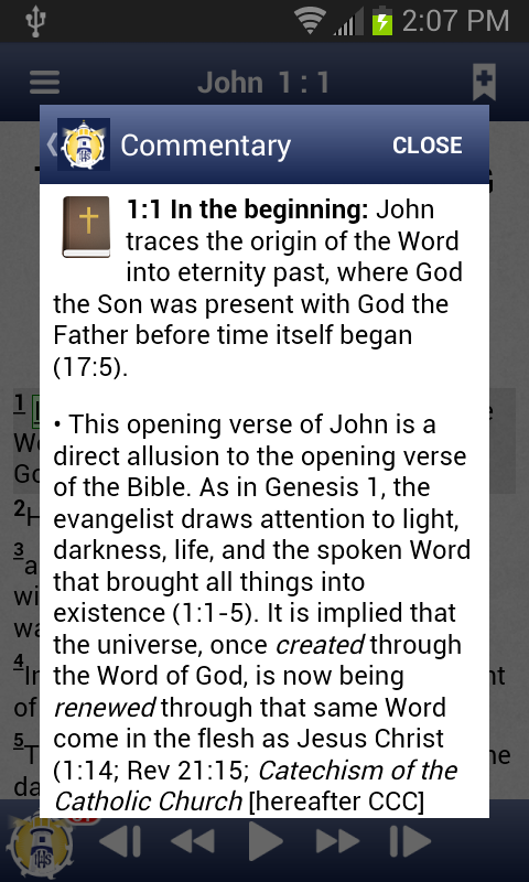 Catholic Study Bible App- screenshot