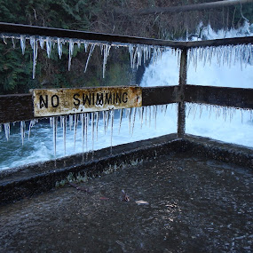 No Swimming by Scott Morgan - City,  Street & Park  City Parks ( water, melting, no swimming, ice, fall, icicle,  )