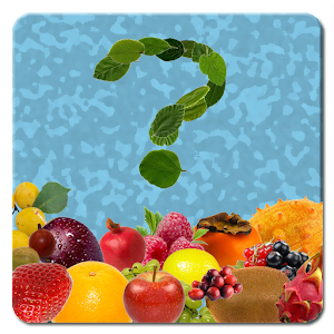 Fruity & Co Quiz for PC and MAC