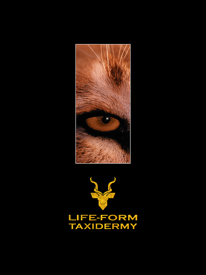 Life-Form Taxidermy- screenshot