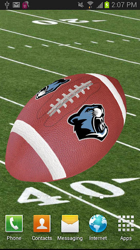 PANTHERS HIGH SCHOOL FOOTBALL