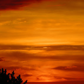 Amber Orb by Tanya Washburn - Landscapes Sunsets & Sunrises ( fiery, reds, orb, amber, sunset )