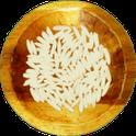 Free Rice icon