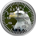 BoP 1 Bald Eagle Analog Clock icon