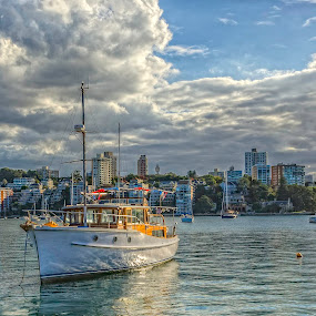Sydney Double Bay by Mihail Marzyanov - City,  Street & Park  Vistas