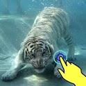Magic wave: White tiger attack icon