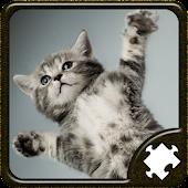 Katter Pussel