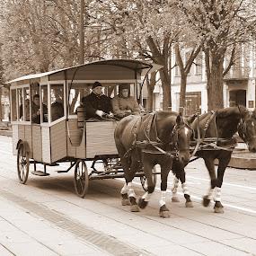 konke by Vygintas Domanskis - City,  Street & Park  Street Scenes ( traffic, street, street scene, transportation, city,  )
