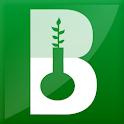 Benini Antonio logo