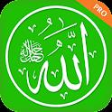 İlahi ve Dini Bilgiler Pro icon