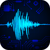 Electronic Seismometer