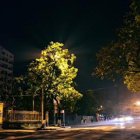 City in night by Lê Thị Thanh  Tâm - City,  Street & Park  Night
