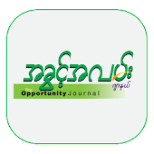 The Opportunity Journal