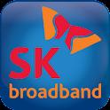 iDVRVue_SK logo