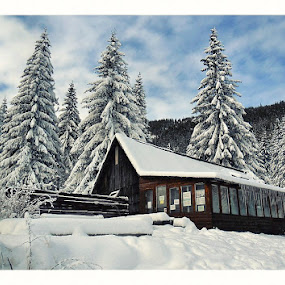 Winter by Costin Mugurel - Buildings & Architecture Other Exteriors ( mountains, winter, trees, house, landscape )