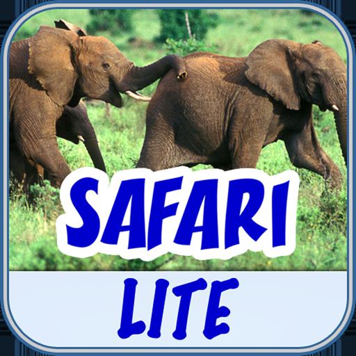 BabyFirst's Safari Lite