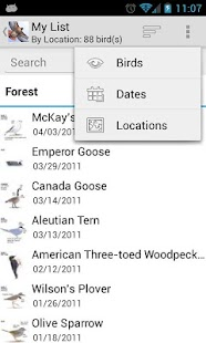Sibley Birds of North America- screenshot thumbnail