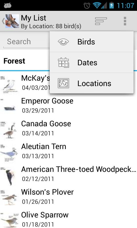 Sibley Birds of North America - screenshot