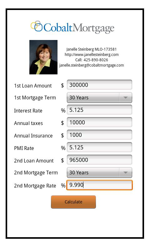 Janelle Steinberg's Mortgage - screenshot