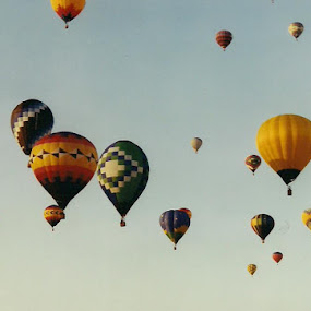 Hot Air Ride by Tina French - Transportation Other (  )