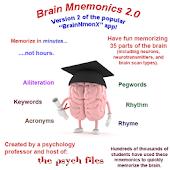 Memorize the Brain