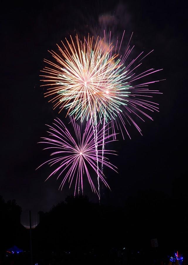 Four Sparkles.. by Vishal Bhatnagar - Public Holidays July 4th (  )