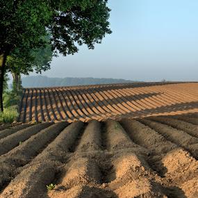 Flemish Ardennes, Belgium by Edzo Boven - Landscapes Mountains & Hills ( 2014, lijnen, flemish ardennes, pentax k-3, lines, belgium, landschappen, vlaamse ardennen, landscapes, belgië )