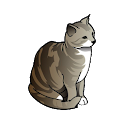 Cats coloring book icon