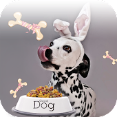 Spotty Dog's Food