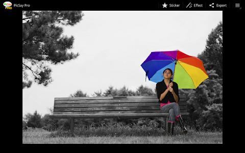 PicSay Pro - Photo Editor v1.7.0.1