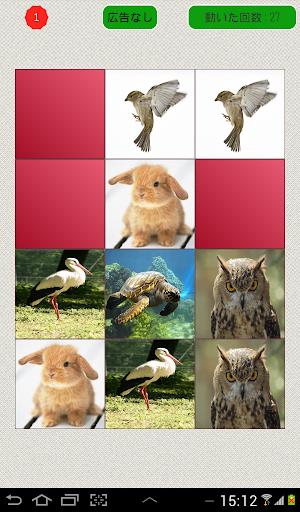 メモリーゲーム-動物