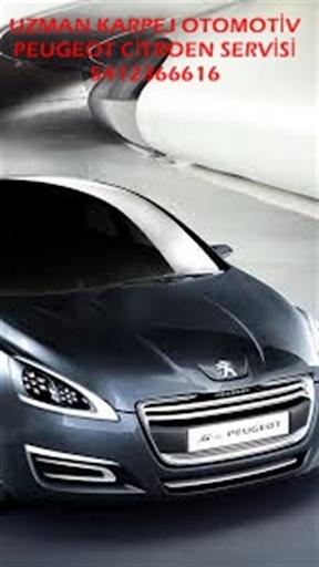 Peugeot Citroen Servisi
