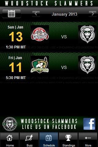 Woodstock Slammers - screenshot