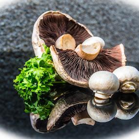 Just Mushrooms by Lynnie Adams - Food & Drink Fruits & Vegetables ( fungi, food, still life, vegetables, mushrooms )