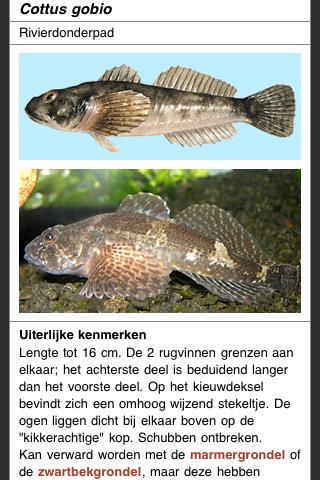 Zoetwatervissen van Nederland - screenshot